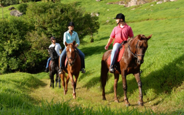 HORSE RIDING AT DOMAINE ETOILE